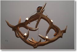 Diamond In Antler Chandelier