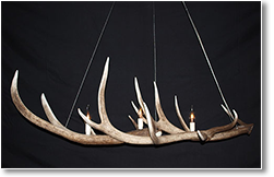 Short Long Antler Chandelier