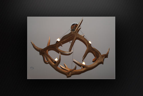 Antler Diamond In
