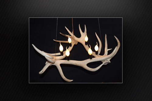 Antler Bleached Out