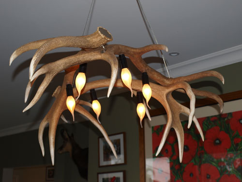 Deer Antler Lighting Rapid Effects Rapid Effects