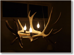 Bleached Triangle Up Antler Chandelier
