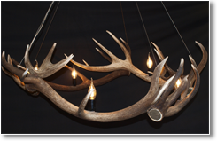 Orbit Antler Chandelier