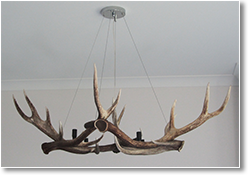 Diamond Antler Chandelier